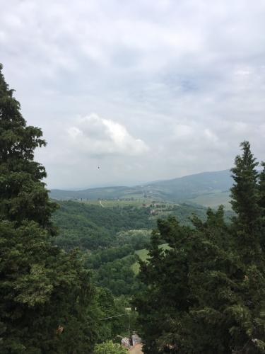 2018 CastelloDiVerrazzano 3