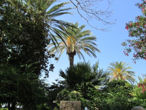 Cipru-Girne35