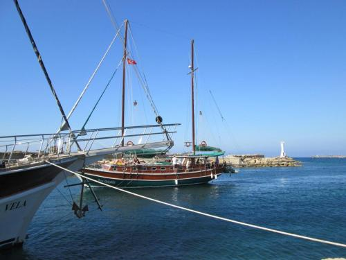 Cipru-Marine32