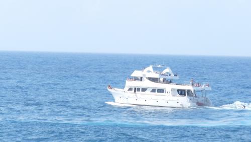 Cipru-Marine38
