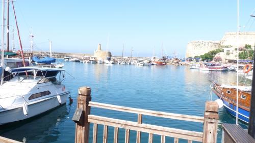 Cipru-Marine40