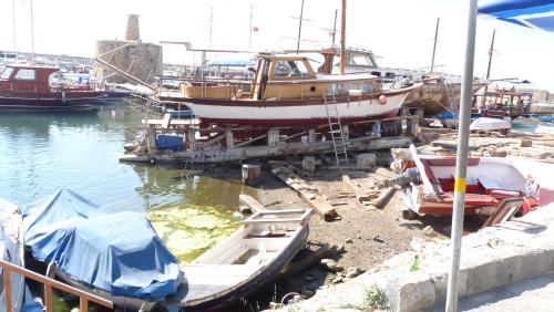 Cipru-Marine41