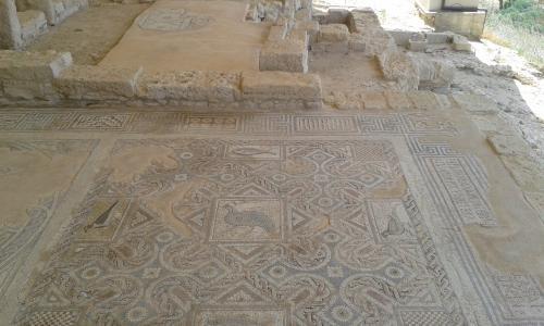 Cipru-Mozaic07