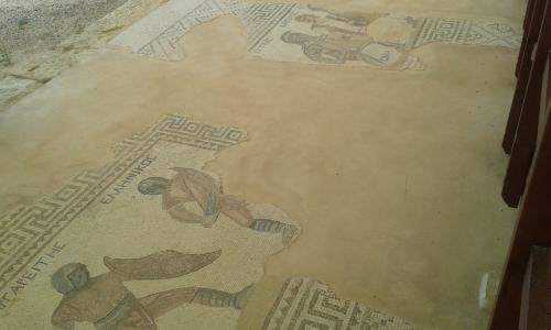 Cipru-Mozaic11