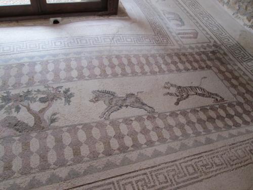 Cipru-Mozaic42
