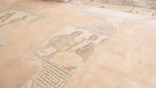 Cipru-Mozaic48
