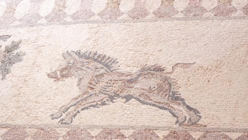 Cipru-Mozaic58
