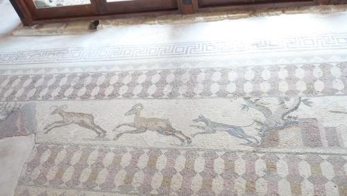Cipru-Mozaic59
