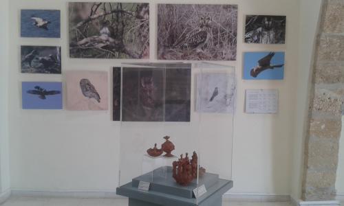 Cipru-Muzeu14