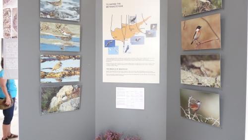 Cipru-Muzeu15