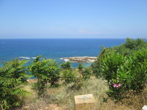 Cipru-PeDrumuri29