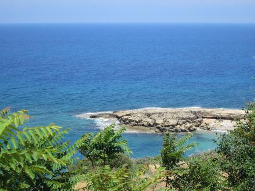 Cipru-PeDrumuri30