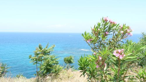Cipru-PeDrumuri34
