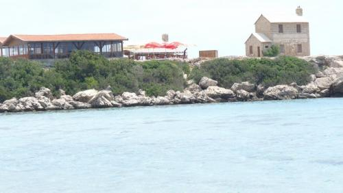 Cipru-SeaBird76