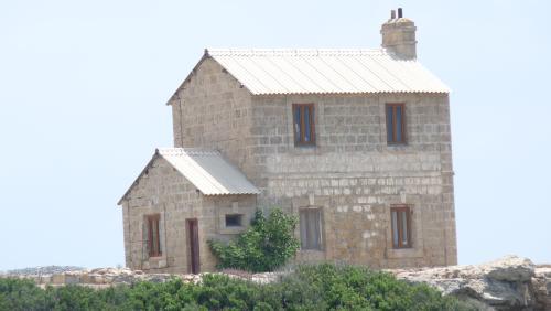 Cipru-SeaBird77