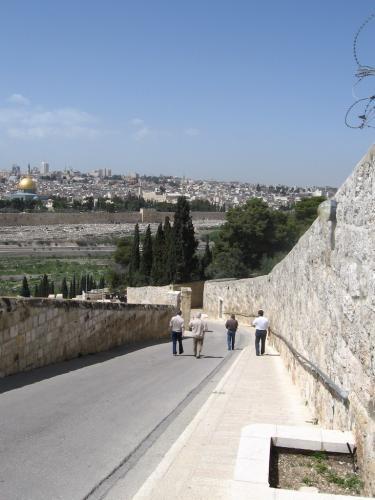 IERUSALIM-Gradina Ghetimani (01)
