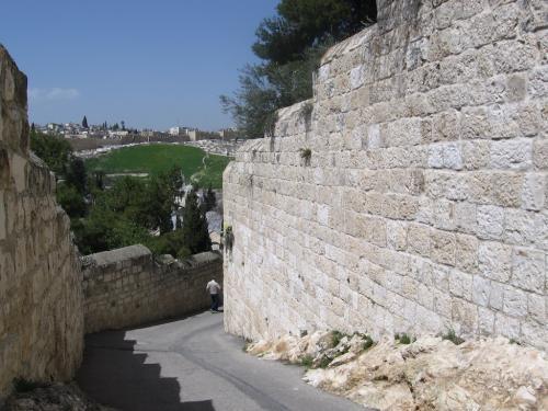 IERUSALIM-Gradina Ghetimani (04)
