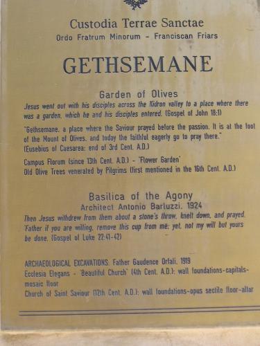 IERUSALIM-Gradina Ghetimani (08)