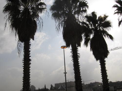 ISRAEL-Pe drumuri (01)