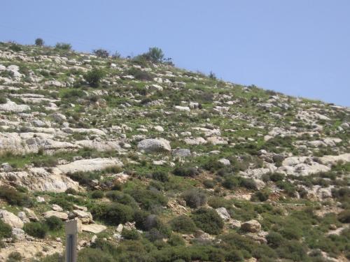 ISRAEL-Pe drumuri (12)