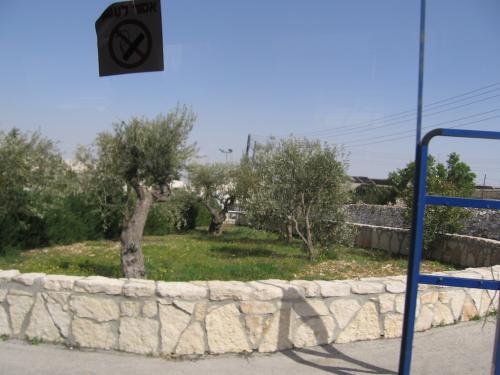 ISRAEL-Pe drumuri (24)