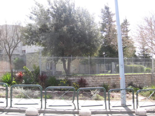 Ierusalim (03)
